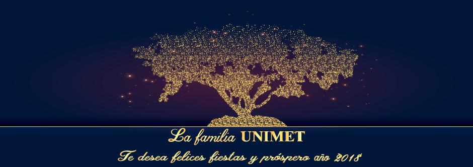 Banner Felices-fiestas2